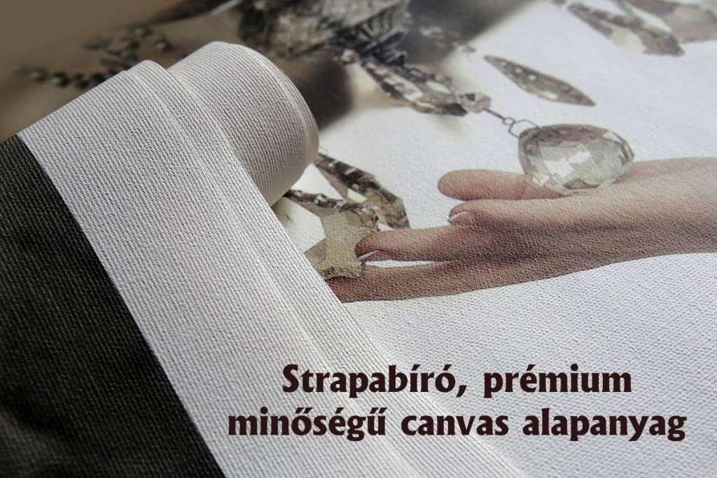 Minőségi Canvas, vászon nyomtatás